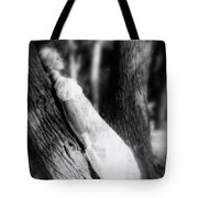 Woman On A Trunk Tote Bag by Joana Kruse