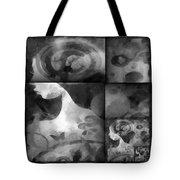 Wondering 2 Tote Bag by Angelina Vick