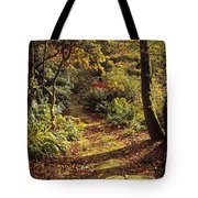 Woodland Path, Mount Stewart, Ards Tote Bag by The Irish Image Collection
