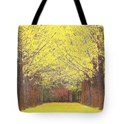 Yellow Trees Tote Bag by Kume Bryant