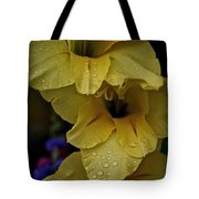 Yellow Trio Tote Bag by Susan Herber