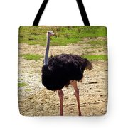 You Look At Me I Look At You Tote Bag by Patricia Griffin Brett