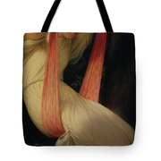 Young Girl On A Swing Tote Bag by Hippolyte Delaroche