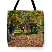 Youthful Memories  Tote Bag by Pamela Patch