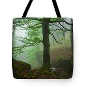 Dark Forest Tote Bag by Evgeni Dinev