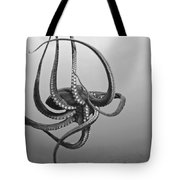 Day Octopus Tote Bag by Dave Fleetham - Printscapes