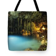 Dzitnup Natural Well Tote Bag by Bill Schildge - Printscapes