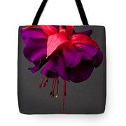 Fuchsia Tote Bag by Dawn OConnor