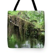 Hall Of Mosses - Hoh Rain Forest Olympic National Park Wa Usa Tote Bag by Christine Till