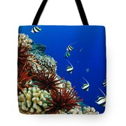 Hawaiian Reef Scene Tote Bag by Dave Fleetham - Printscapes