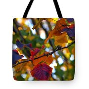 Leaves Of Autumn Tote Bag by Stephen Anderson