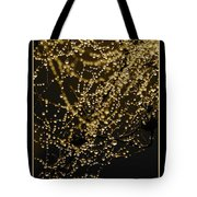 Let Your Light Shine  Tote Bag by Carol Groenen