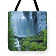 Lower Proxy Falls Tote Bag by Greg Vaughn - Printscapes