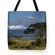 Mount Kilimanjaro Tote Bag by Michele Burgess