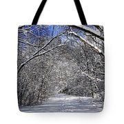 Path In Winter Forest Tote Bag by Elena Elisseeva