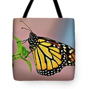 Taking A Break Tote Bag by Christopher Holmes