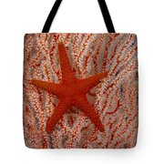 Thailand, Marine Life Tote Bag by Dave Fleetham - Printscapes