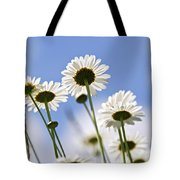White Daisies Tote Bag by Elena Elisseeva