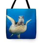 Green Sea Turtle Tote Bag by Dave Fleetham - Printscapes