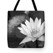 Water Lily Tote Bag by Bill Brennan - Printscapes