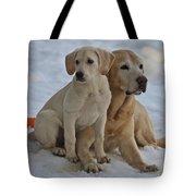 Yellow Labradors Tote Bag by Steven Lapkin