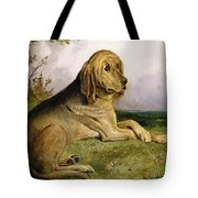 A Bloodhound in a Landscape Tote Bag by English school