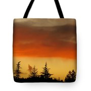 A Distant Rain Tote Bag by CML Brown