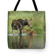 A Family Affair Tote Bag by Sandra Bronstein