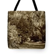 A Lowcountry Springtime Tote Bag by Suzanne Gaff