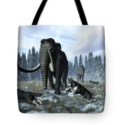 A Pack Of Dire Wolves Crosses Paths Tote Bag by Walter Myers