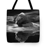 A Polar Bear Reflects Tote Bag by Karol Livote