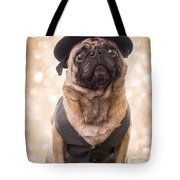 A Star Is Born - Dog Groom Tote Bag by Edward Fielding