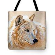 Adobe White Tote Bag by Sandi Baker