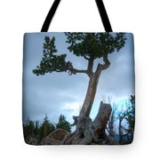 Against The Odds Tote Bag by Idaho Scenic Images Linda Lantzy