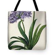Agapanthus Umbrellatus Tote Bag by Pierre Redoute