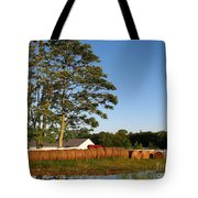 All In A Row Tote Bag by Todd A Blanchard