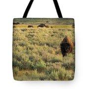American Bison Tote Bag by Sebastian Musial