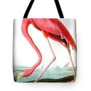 American Flamingo Tote Bag by John James Audubon