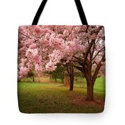 Approach Me - Holmdel Park Tote Bag by Angie Tirado
