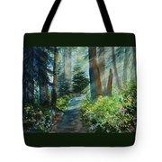 Around The Path Tote Bag by Kerri Ligatich
