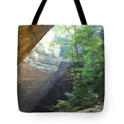 Ash Cave Tote Bag by Mindy Newman