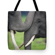 Asian Elephant Greeting Tote Bag by Cyril Ruoso
