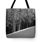 Aspencade Tote Bag by Skip Hunt