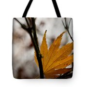 At Rest Tote Bag by Mike Reid