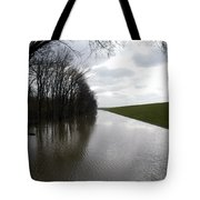 At The Levee Tote Bag by DArcy  Evans