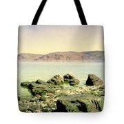 At The Sea Of Galilee Tote Bag by Vasilij Dmitrievich Polenov