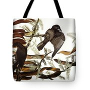 AUDUBON: CROW Tote Bag by Granger