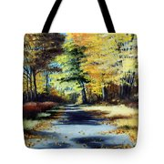Autumn Colors Tote Bag by Paul Walsh