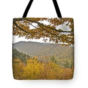 Autumn In The Smokies Tote Bag by Michael Peychich
