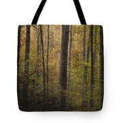 Autumn In The Woods Tote Bag by Andrew Soundarajan